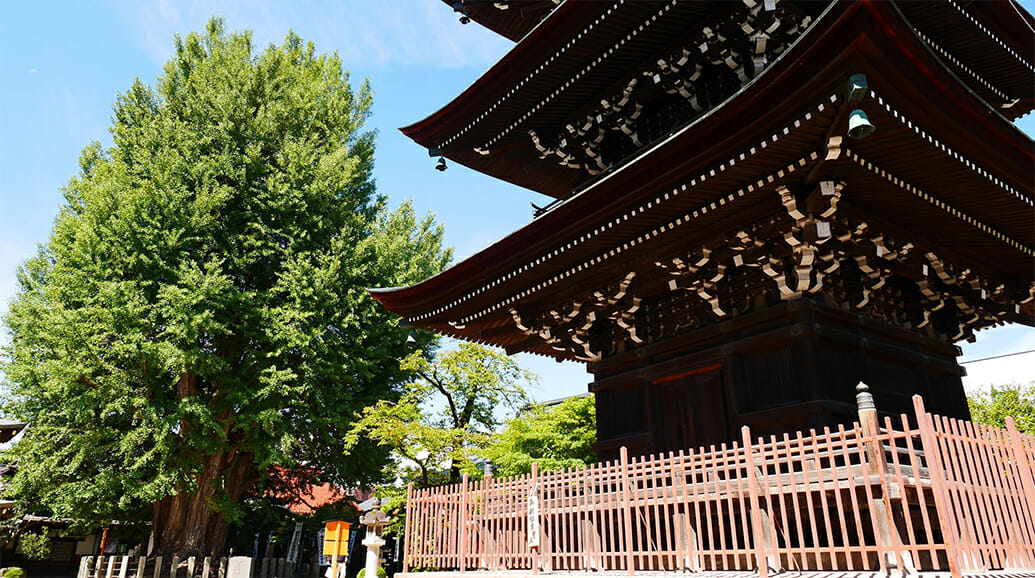 歴史 | 飛騨高山観光公式サイト