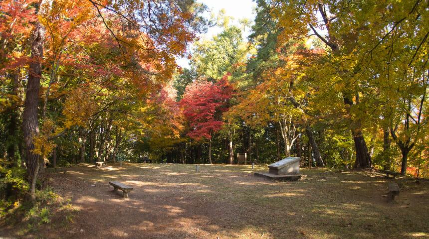 16, 高山城跡(日本遺産構成文化財)