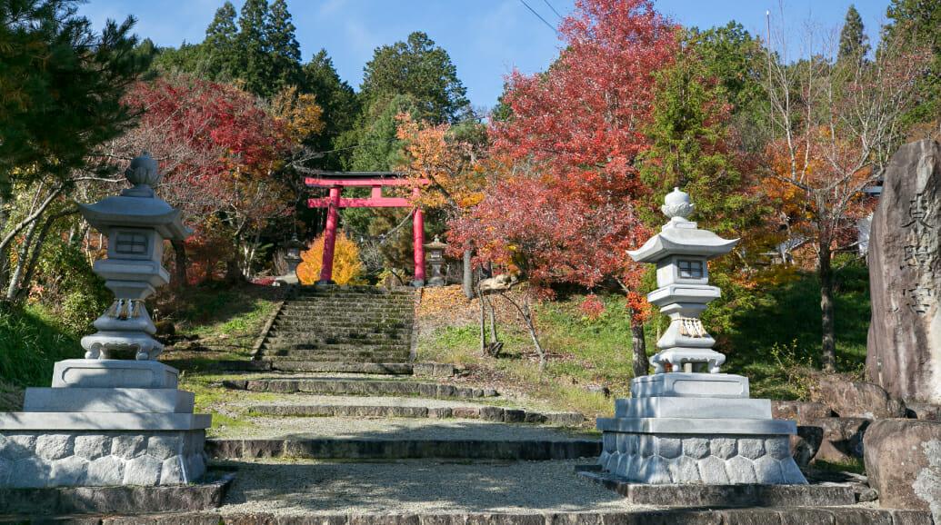 秋には木々が彩り、紅葉が楽しめます。